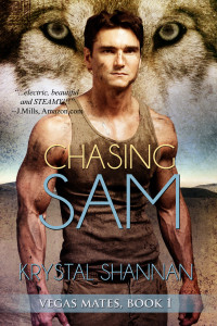 chasingsam